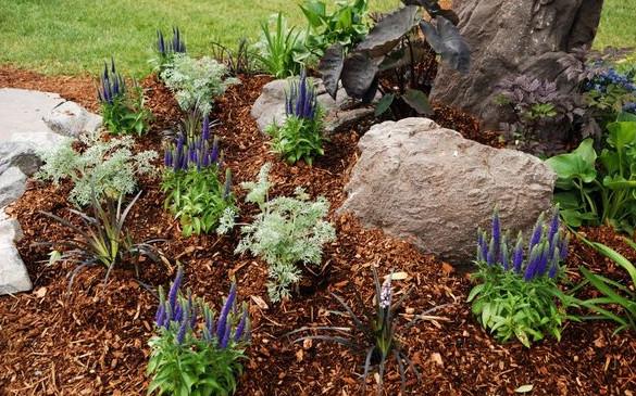 ленивый сад
