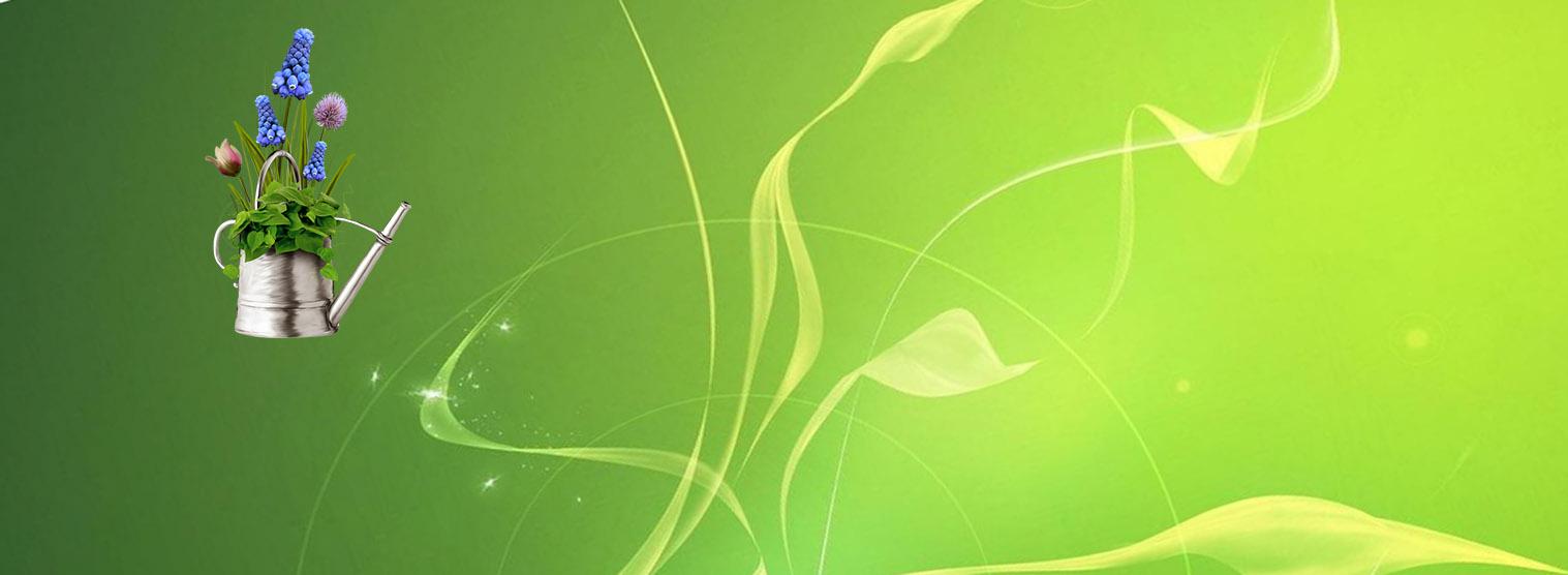 Уход за растениями и подкормка