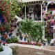 Как обустроить участок у дома или маленький дворик на даче